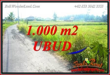 Dijual Murah Tanah di Ubud Bali 1,000 m2 di Ubud Pejeng