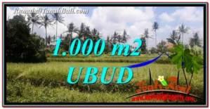 TANAH MURAH JUAL UBUD 1,000 m2 View Sawah