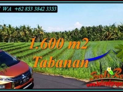 TANAH MURAH JUAL TABANAN 1,600 m2 SAWAH DAN LAUT