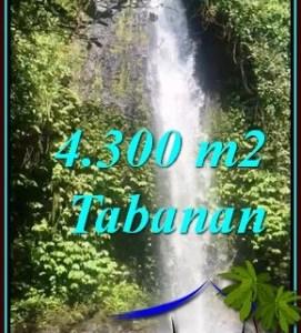 DIJUAL MURAH TANAH di TABANAN 43 Are di SELEMADEG BARAT