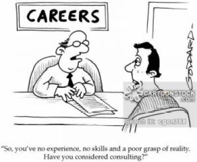 'So, you've no experience, no skills and a poor grasp of reality... Have you considered consulting?'