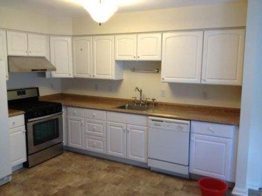 366473-kitchens_photo1