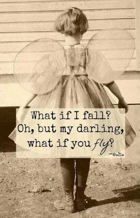 Fall or fly