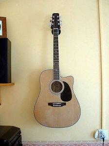 Mijn semi-accoustische gitaar.