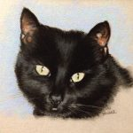 pastel of black cat