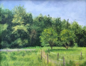 oil of narrow horse path through an overgrown field leads to deep woods