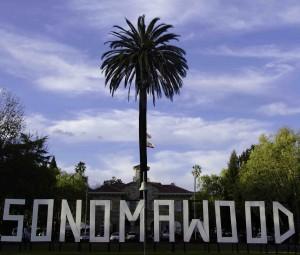 Sonomawood picture: credit Robert Redfield