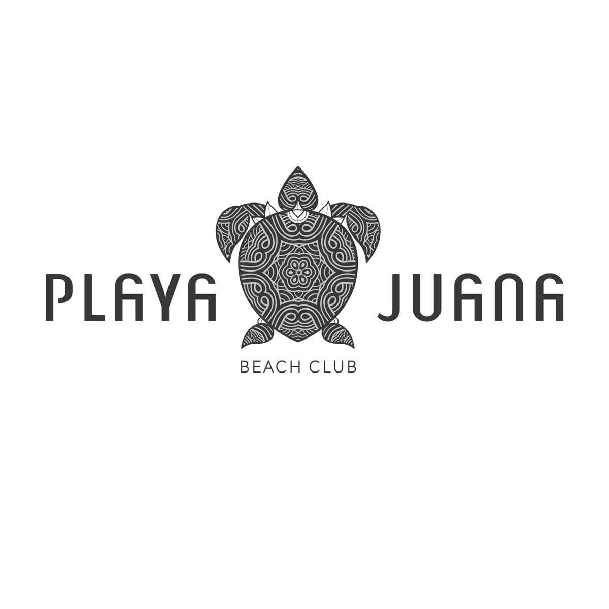 diseño de logotipo con tortuga