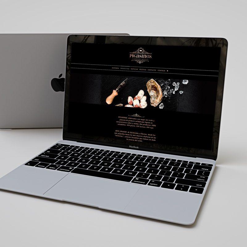 Picasines, diseño web, branding y web