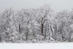 Biała zima w Wielkiej Brytanii
