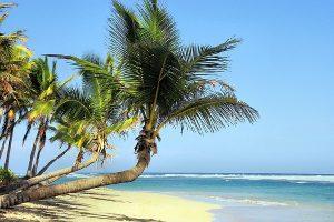 Wakacje pod palmami - tanie oferty wyjazdow wakacyjnych - wakacje 2016