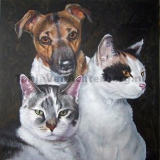 Portret van Rakker, Pebbles en Bambam