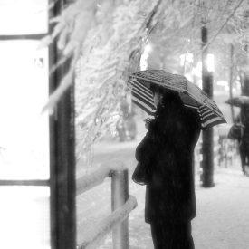 Neige à Takadanobaba (1)
