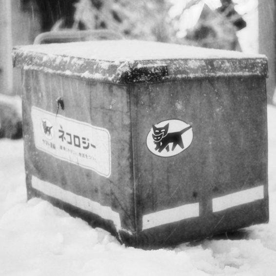 Neige à Takadanobaba (22)