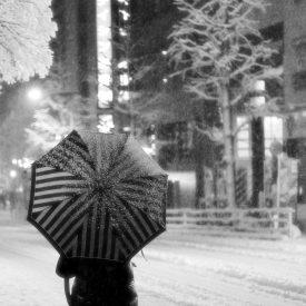 Neige à Takadanobaba (5)
