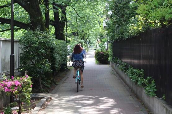 De Takadanobaba à Koenji à vélo (1)