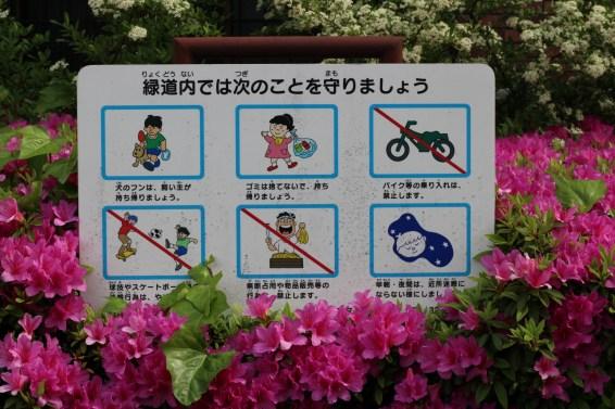 De Takadanobaba à Koenji à vélo (10)