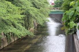 De Takadanobaba à Koenji à vélo (5)