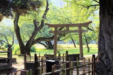 Hamarikiyu Gardens Tokyo (11)