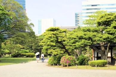 Hamarikiyu Gardens Tokyo (2)