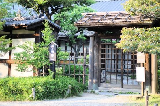 Hamarikiyu Gardens Tokyo (20)