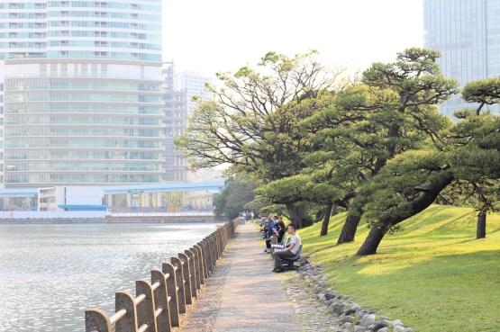 Hamarikiyu Gardens Tokyo (9)