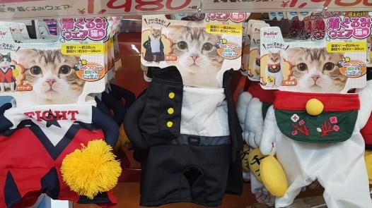 Uniforme de lycéen pour chat