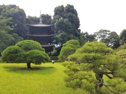 La pagode vieille de 500 ans