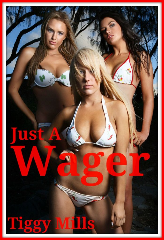 Just a Wager - Tiggy Mills - erotic domination story