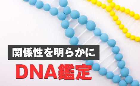 関係性を明らかにするにはDNA鑑定