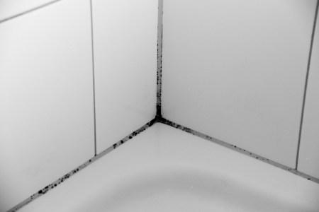 Huis Inspiratie 2018 » schimmel plafond badkamer verwijderen | Huis ...