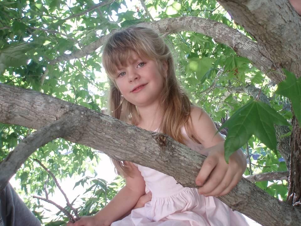 Bijzonder overnachten met kinderen in een boomhut