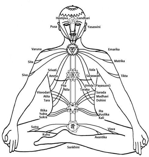 fuerza de la Gran Sabiduría Cósmica Bagalamukhi