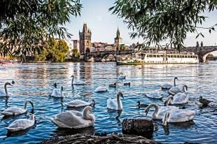 Charles bridge, Moldau River, Vltava in Prague, Czech Republic photographed by Fine Art Photographer Tanya Antalikova