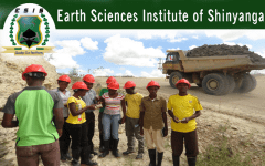 Earth Sciences Institute of Shinyanga-Banner