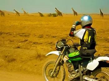 moto girafes randonnées à moto en Tanzanie