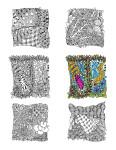 img of 6 3in zentangle drawings