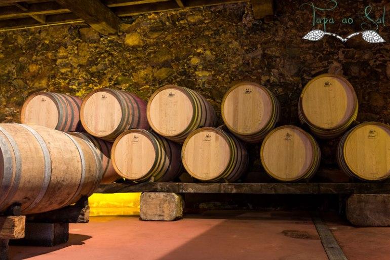 Maturação do Vinho
