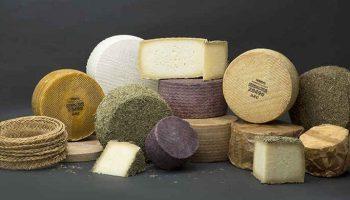 Mejor queso del mundo - queso villarejo-2