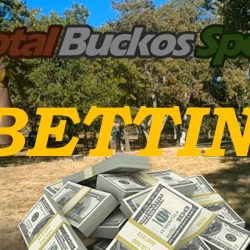 Total Buckos Sports Betting