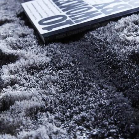comment nettoyer un tapis a poils longs