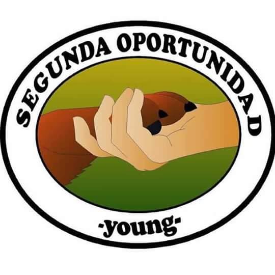 Segunda Oportunidad Young