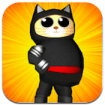 Ninja Kittens iPhone game