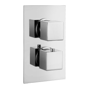 Bathrooms To Love Kuba Thermostatic Twin Shower Valve 1 Outlet