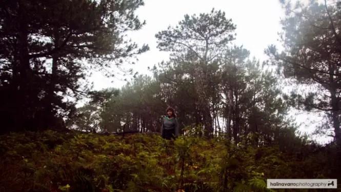 Trail in Mount Kofafey