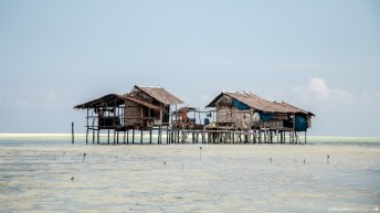 Houses in Punta Sebaring