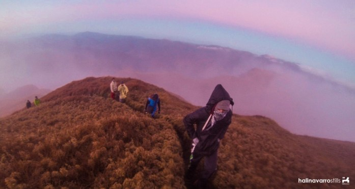Near summit in Mount Pulag, Philippines