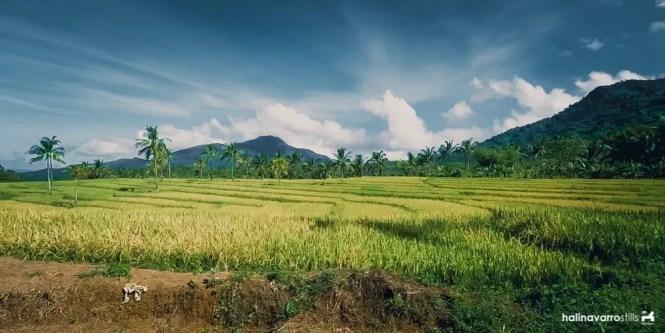 Iyusan rice terraces in Biliran
