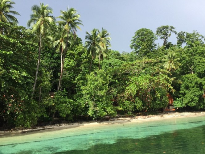 Waigeo Island, Raja Ampat, Indonesia