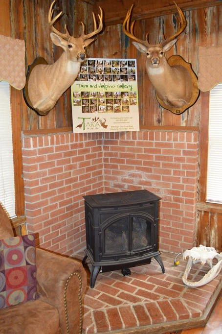 halpino-fireplace